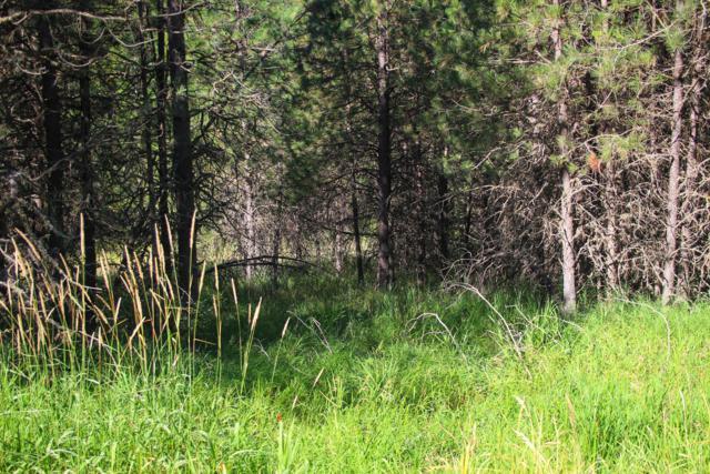 NNA E Canary Creek Rd, Cataldo, ID 83810 (#19-8974) :: Keller Williams Realty Coeur d' Alene