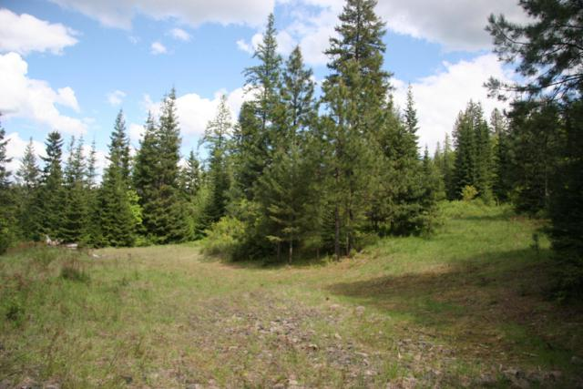Lot 1 Asbury Rd, Harrison, ID 83833 (#19-9059) :: ExSell Realty Group