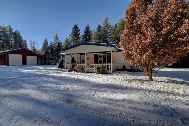866 Deer Trail Rd, Blanchard, ID 83804 (#19-911) :: Link Properties Group