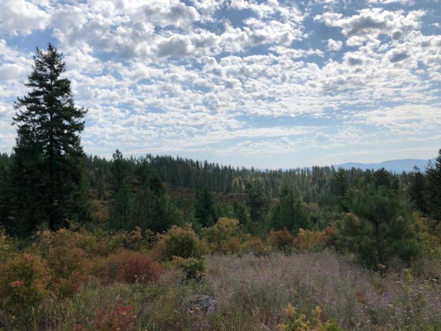 NNA Hidden Valley Parcel 11 Rd, Spirit Lake, ID 83869 (#19-9112) :: Team Brown Realty