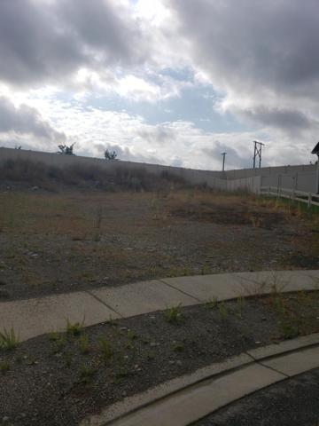 3364 Treaty Rock Blvd, Post Falls, ID 83854 (#19-9154) :: Team Brown Realty