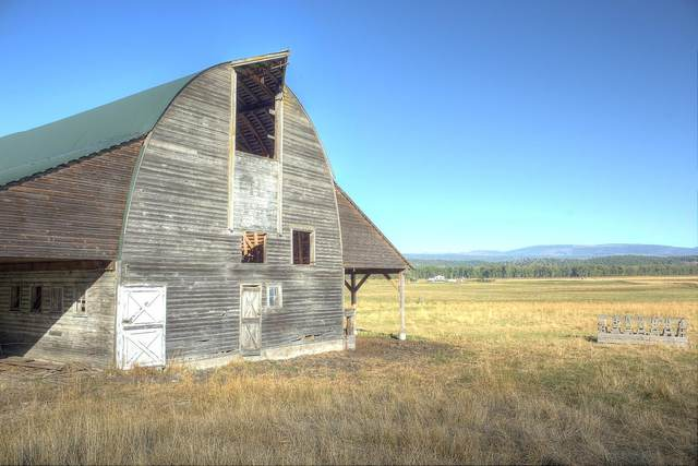 NKA Westside Road, Bonners Ferry, ID 83805 (#20-10258) :: Chad Salsbury Group