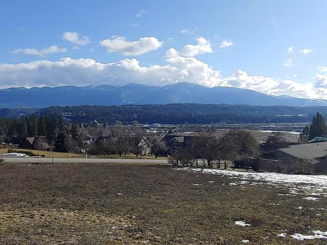 Lot 2 Wildhorse Lane, Bonners Ferry, ID 83805 (#20-1026) :: Kerry Green Real Estate