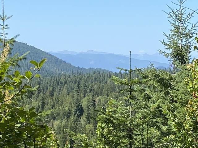 NNA Green Bay Rd, Lot 3, Sagle, ID 83860 (#20-10349) :: Flerchinger Realty Group - Keller Williams Realty Coeur d'Alene