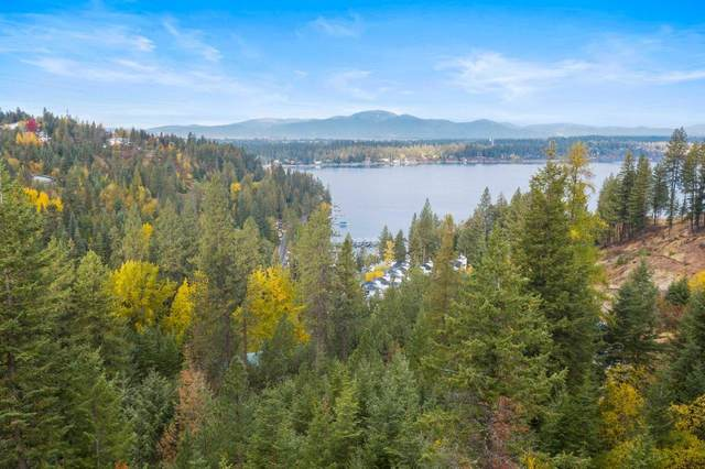 NNA E Upper Hayden Lake Road, Hayden, ID 83835 (#20-10431) :: Mall Realty Group