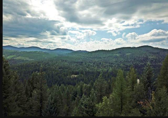 NKA Lot 1 Lightning Peak Rd, Sandpoint, ID 83864 (#20-10558) :: Five Star Real Estate Group