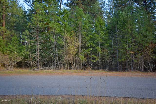 NNA Fitzpatrick Rd, Bonners Ferry, ID 83805 (#20-10620) :: Prime Real Estate Group