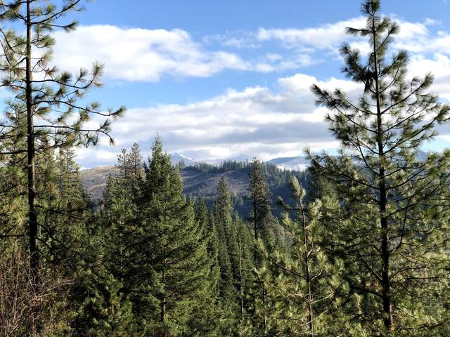 10 Acres Wall Ridge Rd, Kingston, ID 83839 (#20-10937) :: Embrace Realty Group