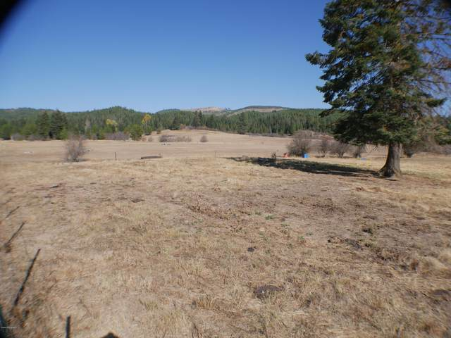 Johns Creek Road, St. Maries, ID 83861 (#20-10974) :: Embrace Realty Group