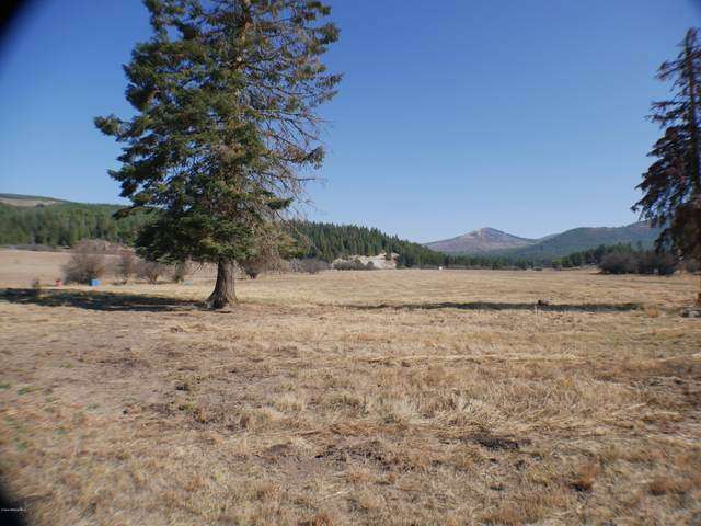 Johns Creek Road, St. Maries, ID 83861 (#20-10975) :: Embrace Realty Group