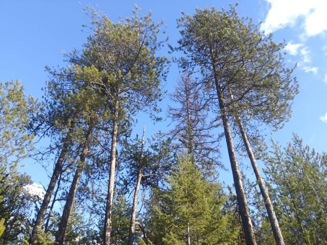 NKA This-A-Way Rd, Spirit Lake, ID 83869 (#20-1106) :: Groves Realty Group