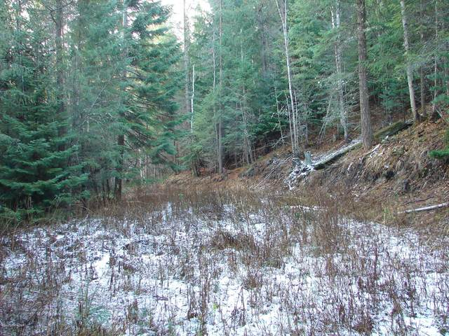 NNA Parker Canyon Rd, Bonners Ferry, ID 83805 (#20-11228) :: CDA Home Finder