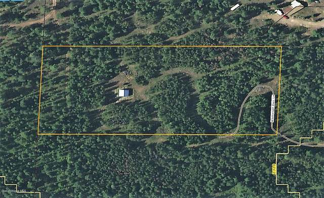325 Whitetail Run Ln, Athol, ID 83801 (#20-11245) :: Chad Salsbury Group