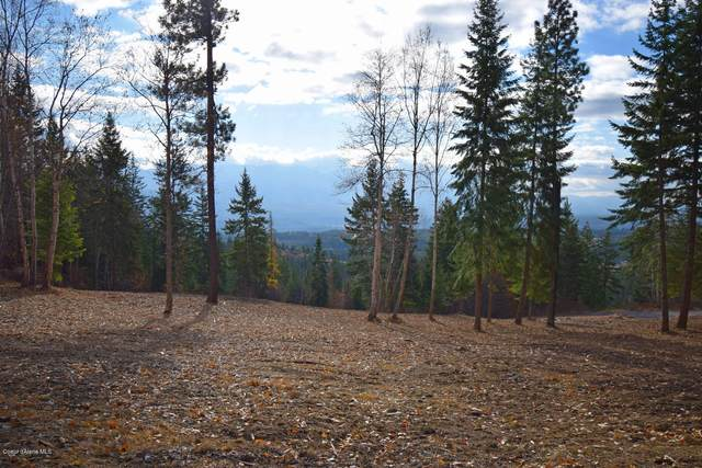 Lot 22 Pintail Dr, Bonners Ferry, ID 83805 (#20-11248) :: Chad Salsbury Group