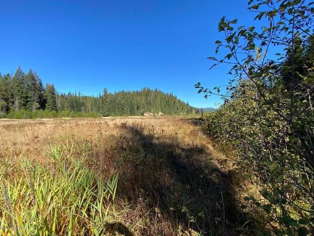NKA Greenhood, Priest River, ID 83856 (#20-11333) :: Flerchinger Realty Group - Keller Williams Realty Coeur d'Alene