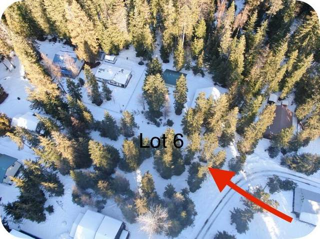 Lot 6 BL Steamboat Bay, Coolin, ID 83821 (#20-1153) :: Link Properties Group