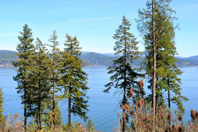 S Isaac Stevens Rd, Coeur d'Alene, ID 83814 (#20-1178) :: Groves Realty Group
