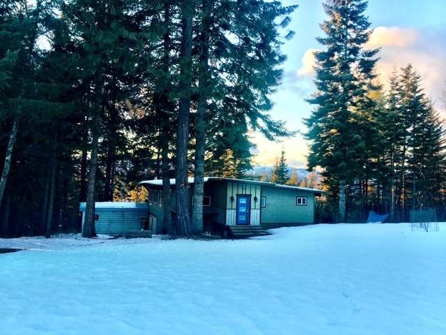 2494 Gold Creek Ridge, Sandpoint, ID 83864 (#20-1188) :: Northwest Professional Real Estate