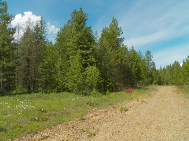 NNA Lions, Priest River, ID 83856 (#20-1205) :: Link Properties Group