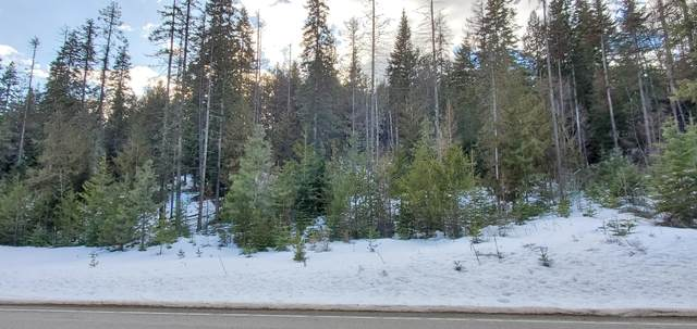 Nka Hwy 95, Priest River, ID 83856 (#20-1290) :: Northwest Professional Real Estate