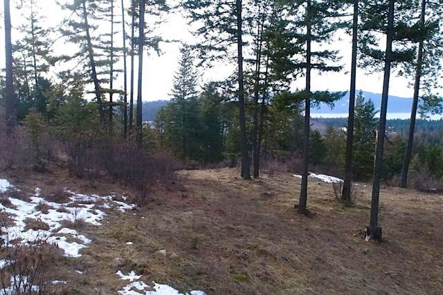 NKA Trappers Loop, Sandpoint, ID 83864 (#20-1361) :: ExSell Realty Group