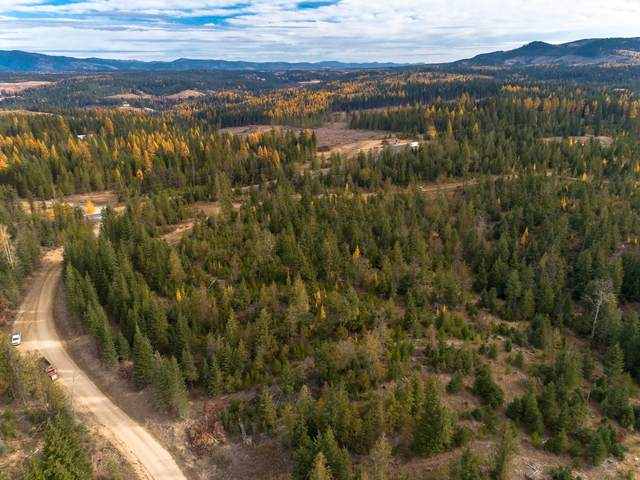 Parcel B Sportsman Access, St. Maries, ID 83861 (#20-1371) :: ExSell Realty Group