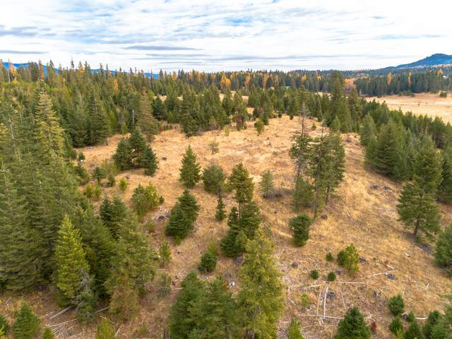 Parcel I Sportsman Access, St. Maries, ID 83861 (#20-1372) :: ExSell Realty Group