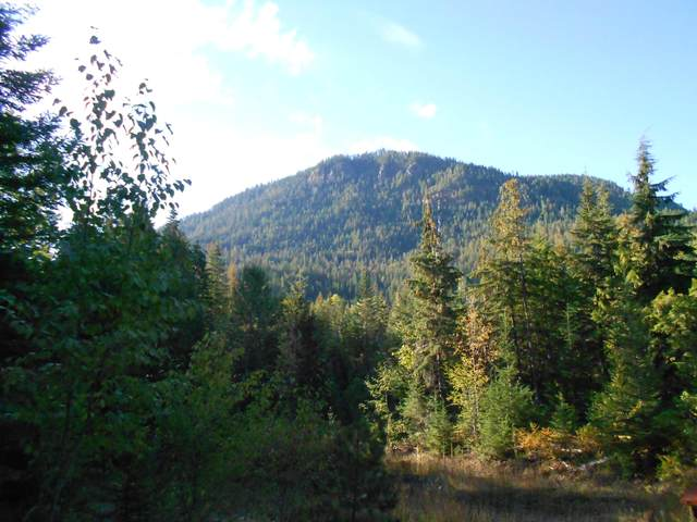 NNA Mosquito Creek Rd, Clark Fork, ID 83811 (#20-1470) :: Mall Realty Group