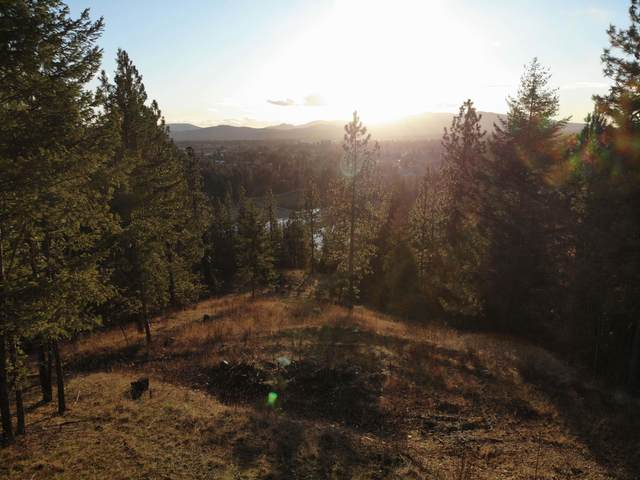 L14 E Sundown Dr, Coeur d'Alene, ID 83815 (#20-1491) :: Northwest Professional Real Estate