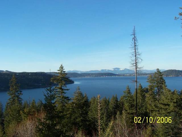 Lot 33 S Ironstone, Harrison, ID 83833 (#20-1929) :: Kerry Green Real Estate