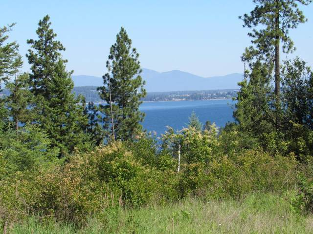 Lot 5 Mariposa Ct, Harrison, ID 83833 (#20-2084) :: Keller Williams Realty Coeur d' Alene