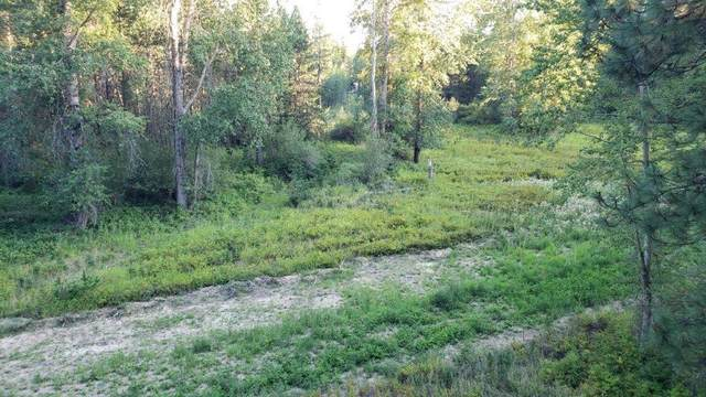 Lot 3 Thunder Ridge, Rathdrum, ID 83858 (#20-2136) :: Team Brown Realty