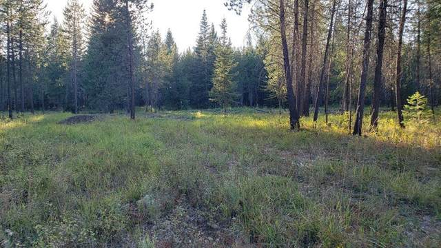Lot 5 Tansy, Rathdrum, ID 83858 (#20-2139) :: CDA Home Finder