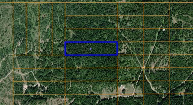 NKA Larsen Rd., St. Maries, ID 83861 (#20-2148) :: Prime Real Estate Group