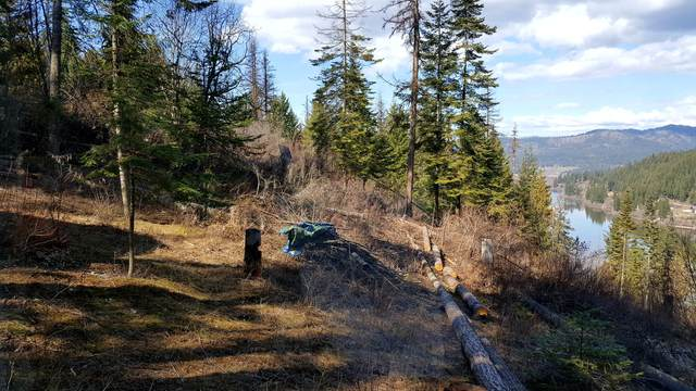 Black Lake Shores Lot 11, St. Maries, ID 83861 (#20-2556) :: HergGroup Coeur D'Alene