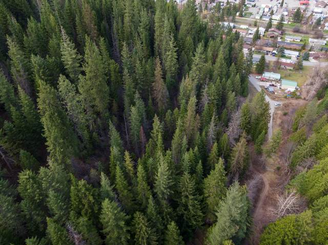 NKA Meyer Gulch, Osburn, ID 83849 (#20-2630) :: Flerchinger Realty Group - Keller Williams Realty Coeur d'Alene