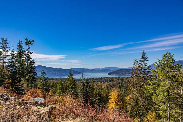 NNA Green Monarch Lane Lot 3, Sandpoint, ID 83864 (#20-2690) :: Team Brown Realty