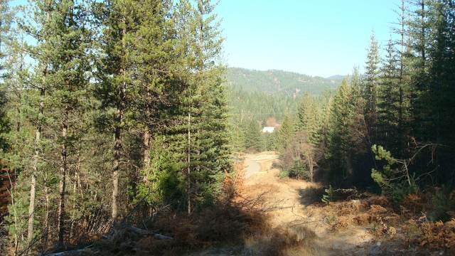 127 Trail Blazer Ct, Pinehurst, ID 83850 (#20-2695) :: HergGroup Coeur D'Alene