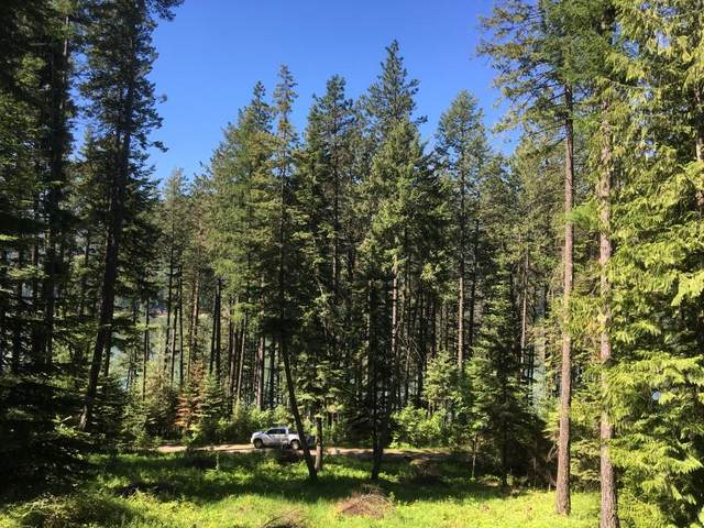 16 Beltane, Sagle, ID 83860 (#20-2721) :: Link Properties Group