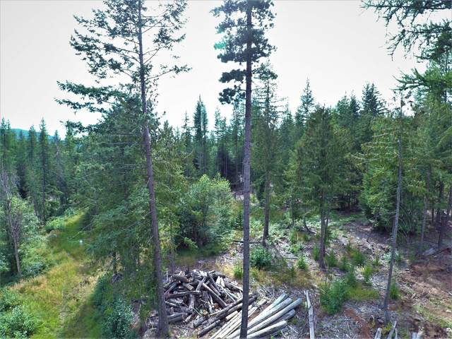 1632 Box Canyon Rd, Sandpoint, ID 83864 (#20-2760) :: Link Properties Group