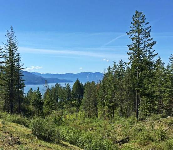 800 Apollo Lane, Sagle, ID 83860 (#20-2766) :: Link Properties Group