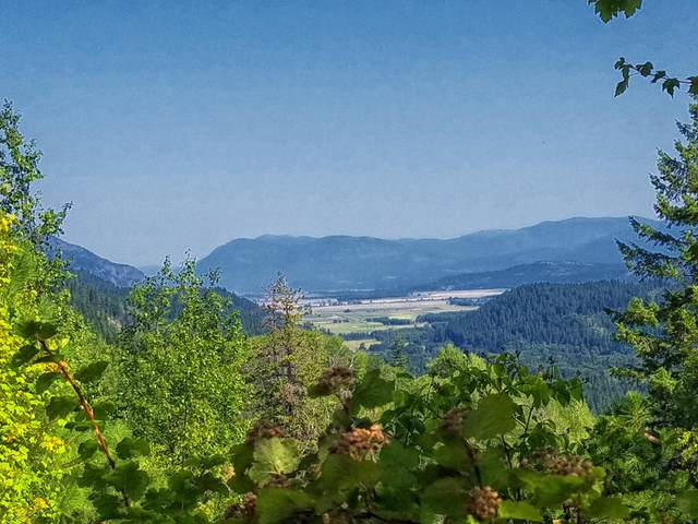 3 Castle And Juniper Rd, Naples, ID 83847 (#20-2777) :: Embrace Realty Group