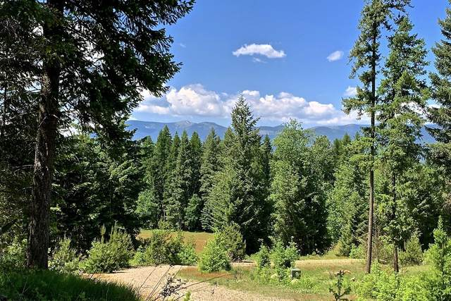 Lot 4 Tarin Court, Sagle, ID 83860 (#20-2781) :: Link Properties Group