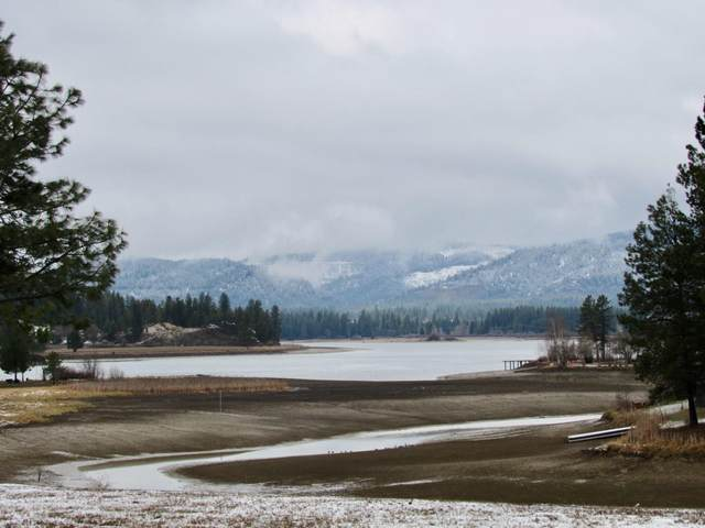 267 Thama, Priest River, ID 83856 (#20-2835) :: Team Brown Realty