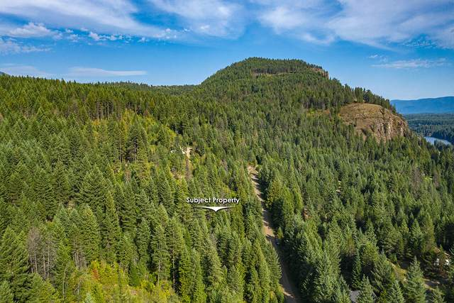 Lot 5 Block 2 Bear Claw Road, Clark Fork, ID 83811 (#20-2905) :: Team Brown Realty