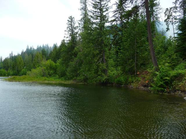 N.K.A. Waterfront Lot, Spirit Lake, ID 83869 (#20-3061) :: ExSell Realty Group