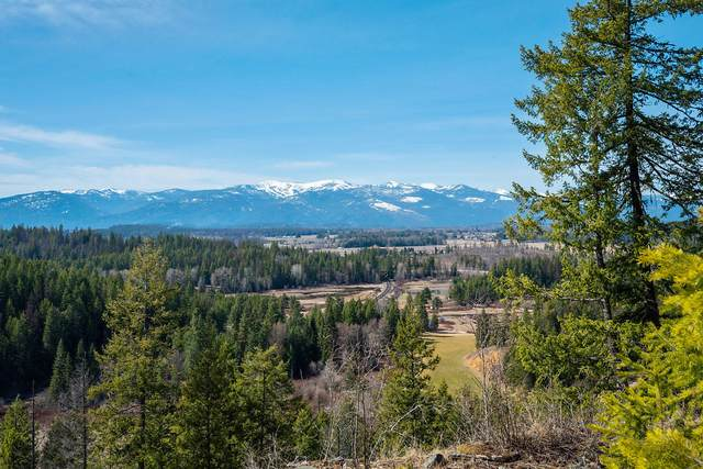 White Cloud Lot 28, Sandpoint, ID 83864 (#20-3178) :: Link Properties Group