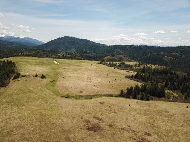 NNA Hells Gulch Road, St. Maries, ID 83861 (#20-362) :: Five Star Real Estate Group