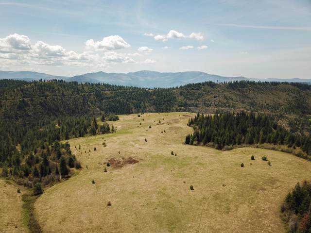 NNA Hells Gulch Road, St. Maries, ID 83861 (#20-363) :: Five Star Real Estate Group