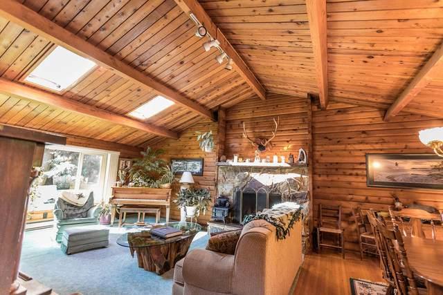 9750 N Glen Hollow Ln, Hauser, ID 83854 (#20-3772) :: Prime Real Estate Group